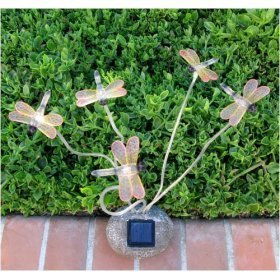 dragonfly solar lights